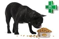 лечебные корма для собак