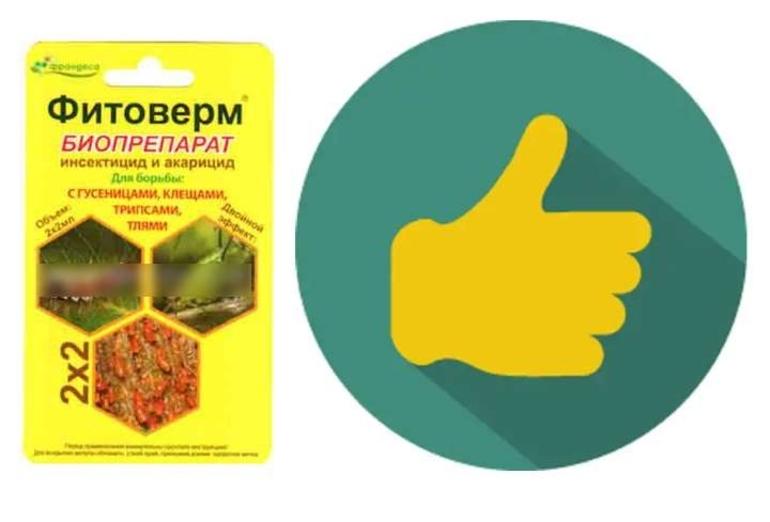 Фитоверм для комнатных растений отзывы