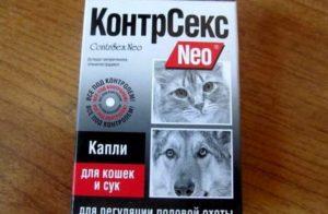 Коробка таблеток для котов