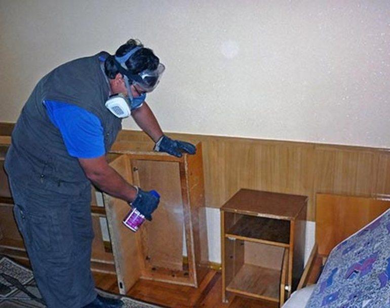 Обработка помещения с помощью Дихлофоса