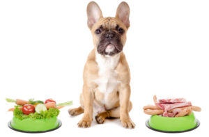 рыба и овощи для собаки