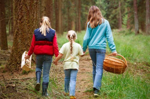 Идя в лес нужно позаботиться о защите от клещей