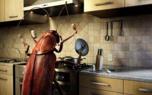 Возможный рост тараканов от излучения