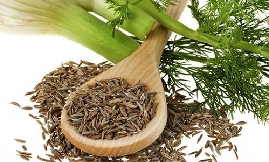 Семена фенхеля против рвоты