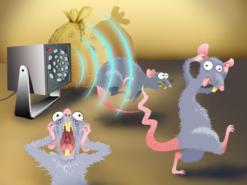 Иллюстрация действия ультразвукового отпугивателя на крыс и мышей