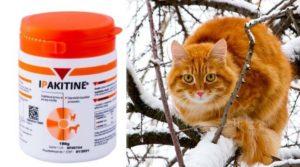 Ипакитине для кошек при почечной недостаточности