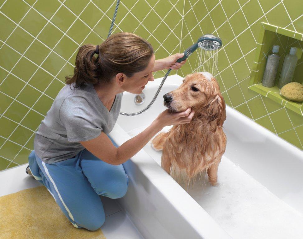 Девушка купает собаку в ванной