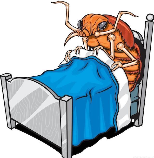 Иллюстрация &quot,Клоп в постели&quot,