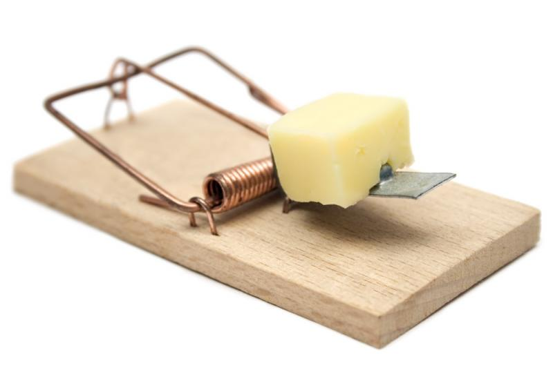 Мышеловка с сыром в качестве приманки