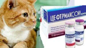 Цефтриаксон – это антибиотик третьего поколения