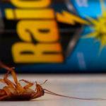 Аэрозоль рейд против тараканов