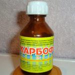 Карбофос для применения от клопов в пузырьке
