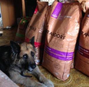 грандорф корм для собак отзывы