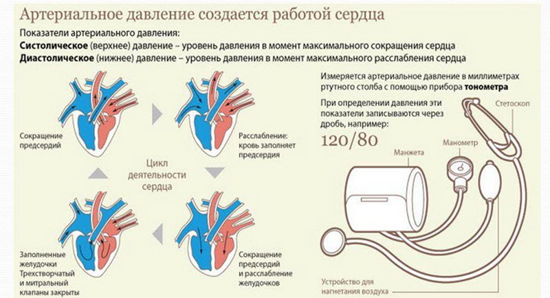 Артериальное давление