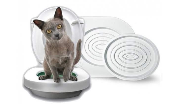 Пластиковый унитаз для вашей кошки
