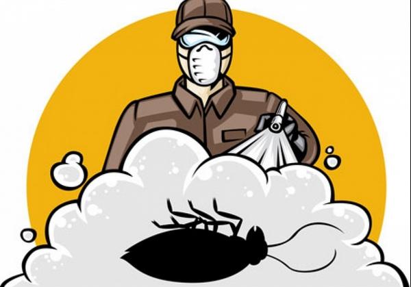 Использование химических средств для борьбы с тараканами