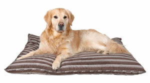 матрасик для собаки