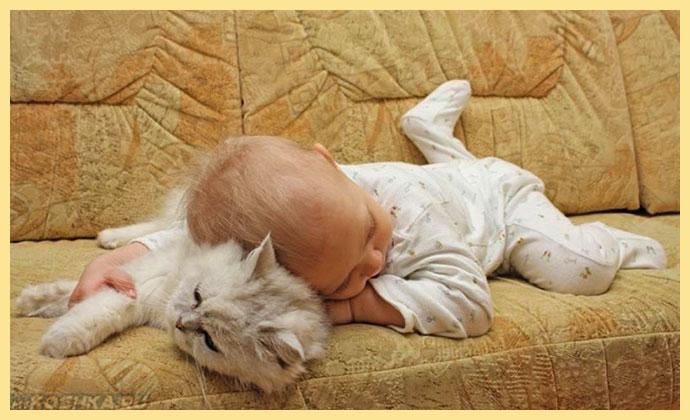 Ребенок и кошка невскаая маскарадная