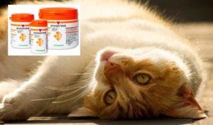 Лактоза – вспомогательное вещество, улучшает прохождение лекарства