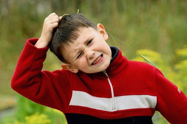 Наиболее опасны клещи для детей