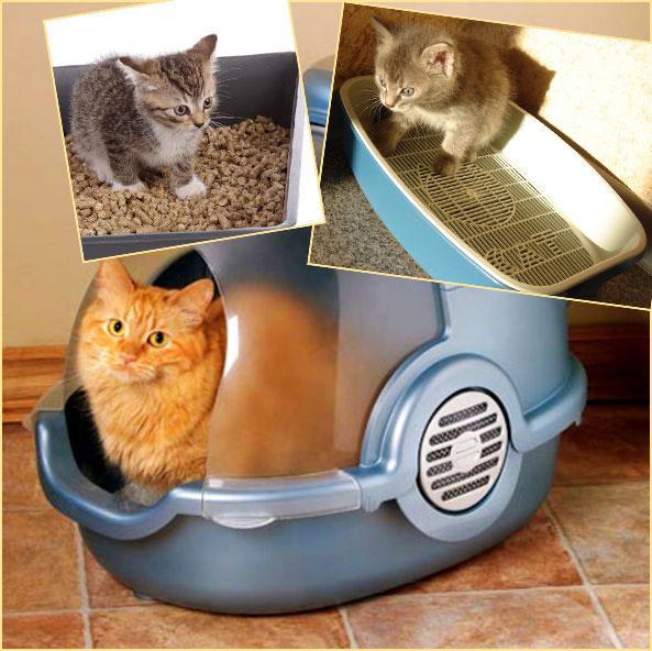 Кошачьи туалеты открытые и закрытый