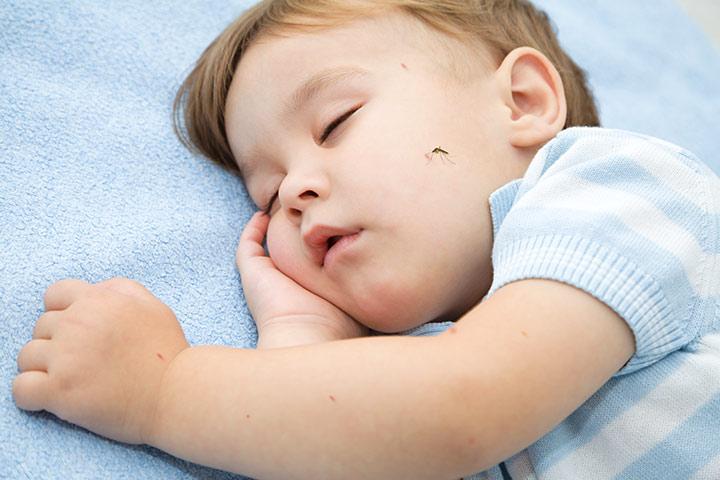Комар, кусающий ребенка