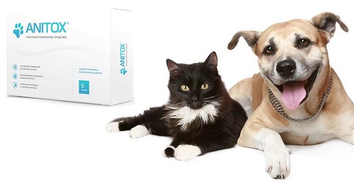 Anitox от паразитов для животных: отлично подходит как для лечения, так и для предупреждения паразитарных инвазий!