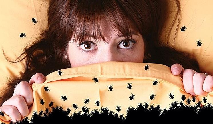 Девушка закрывается одеялом от клопов