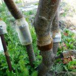 Ловчие пояса из пластиковых емкостей