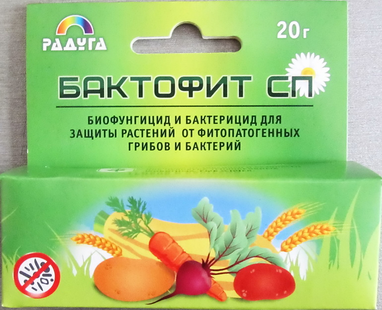Бактофит. Бактериальное фунгицидное средство,