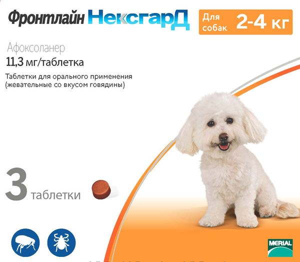 Таблетки для собак «Фронтлайн» популярны среди собаководов