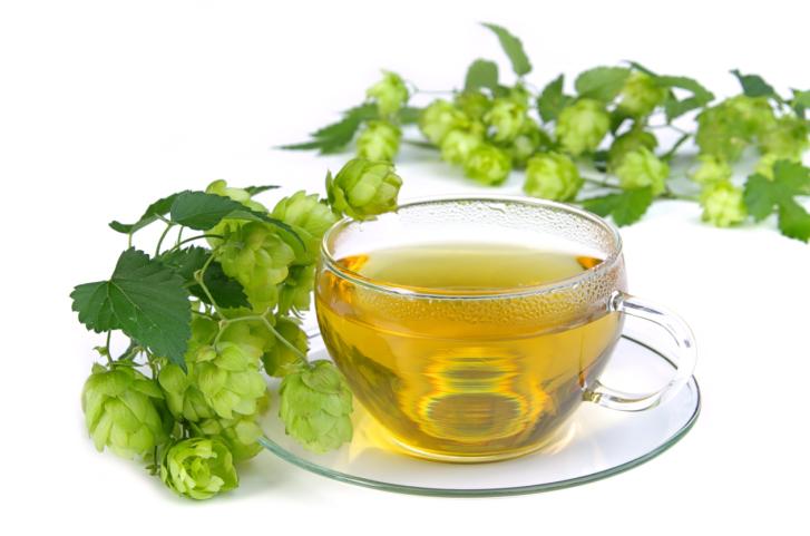 Чай из хмеля повысит мужскую потенцию