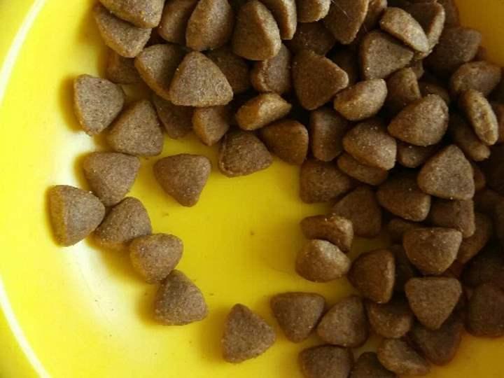 Вид корма Перфект Фит для кошек