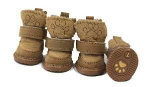 правильная обувь для питомца