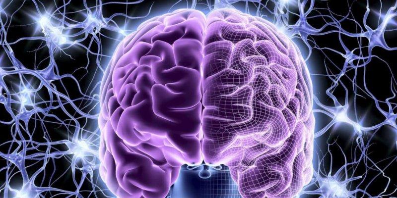 Кислородное голодание нарушает работу головного мозга
