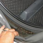 Причина неприятного запаха из машины автомат