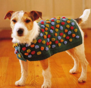 вязаная попона для собак