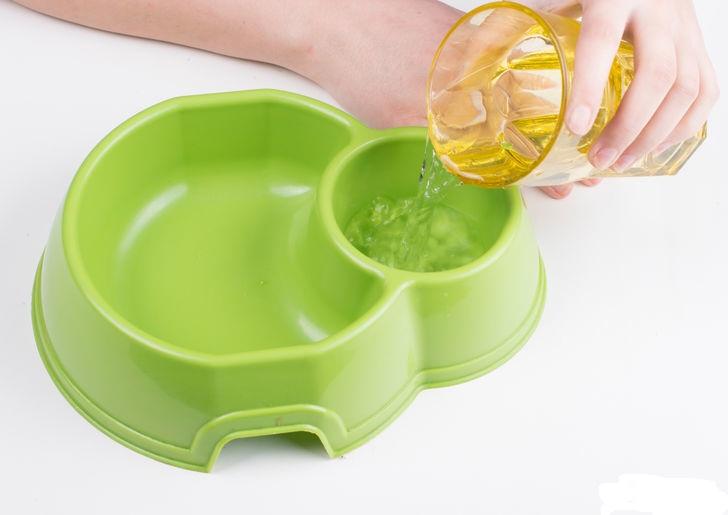 Мытье миски против бактерий
