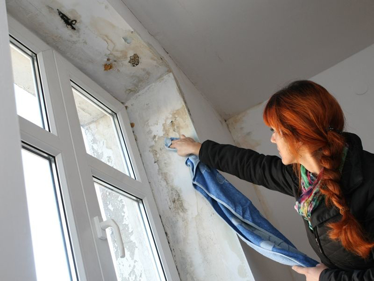Первый этап очистки окна от плесени