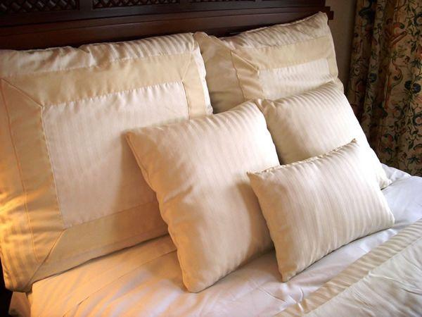 Больше всего паразитов может оказаться в старых подушках