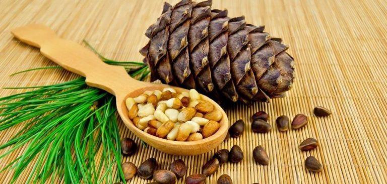 Кедровые орешки для лечения желудка