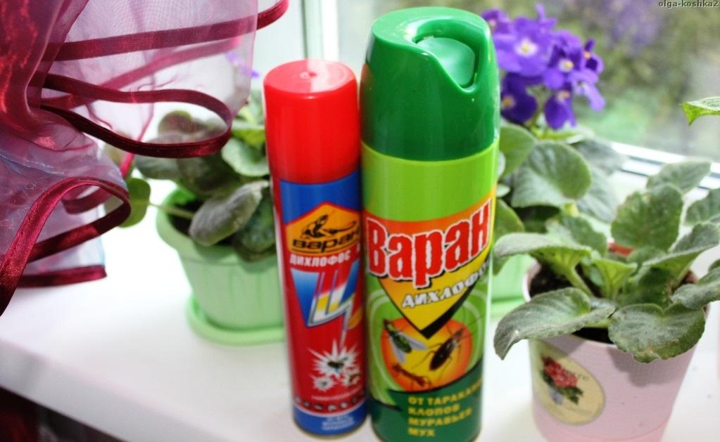 Варан против насекомых в доме