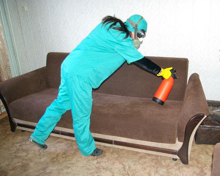 Обработка мягкой мебели от блох
