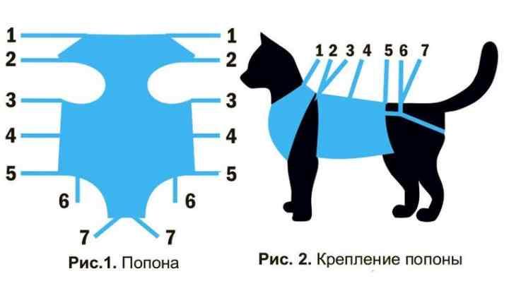 Схема попоны