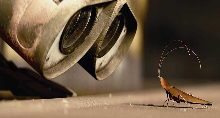 Кадр из мультфильма Валл-И