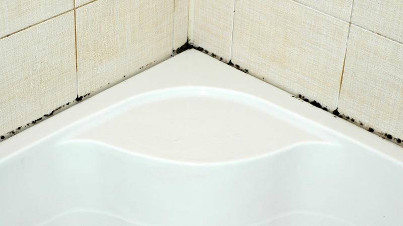 Инфекция на плитке в ванной