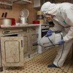 Применение горячего тумана на кухне