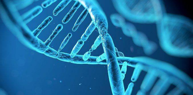 Как проявляется генотип гепатита С 1b и возможно ли лечение?