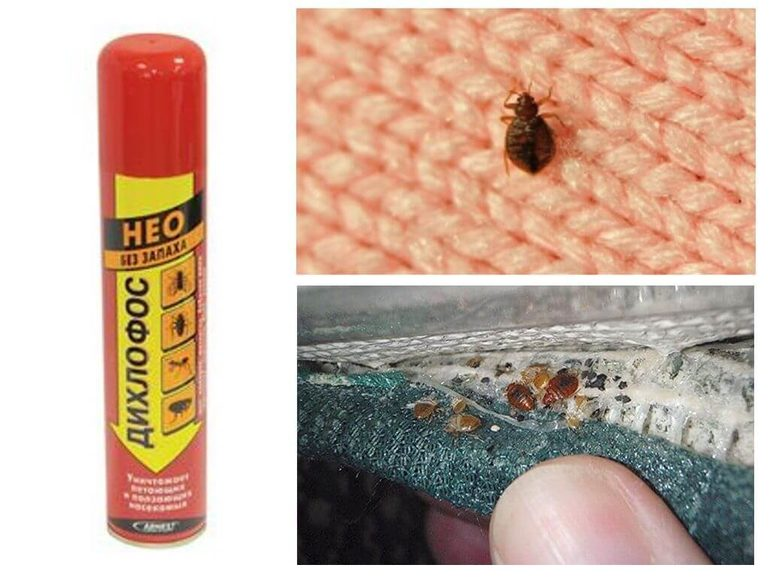 Плюсы и минусы инсектицида
