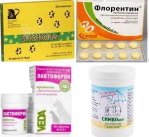 4 препарата-аналога ветом-1